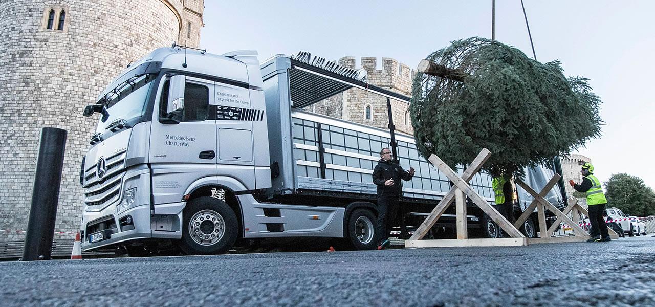 Kerstboom Expresdienst Voor De Britse Koningin Roadstars