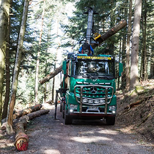 Transport De Bois Pierre Geyer Et Son Arocs 3363 Roadstars